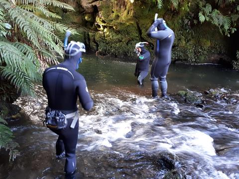 DOC Taupo Fishery Rangers about to begin a drift dive to montor tout numbers